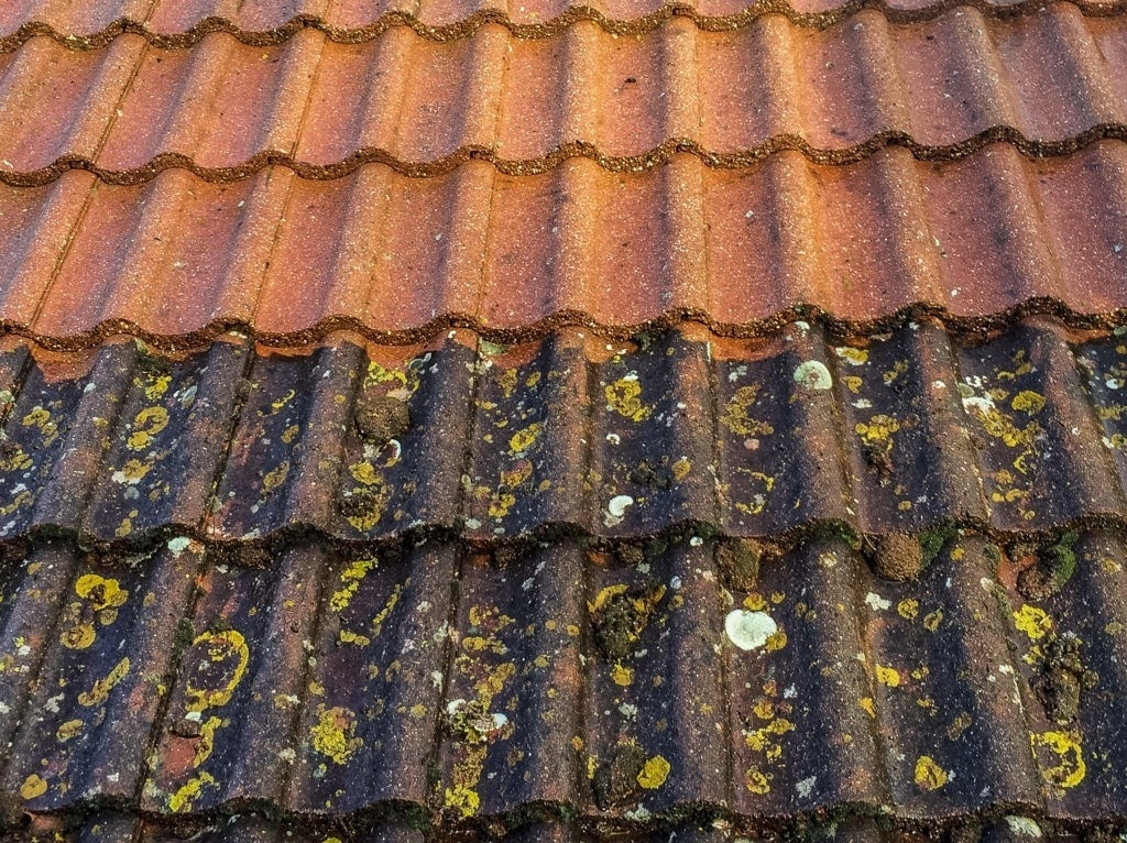 190725_203838_037 Roof Cleaning Wirral, Liverpool, Chester
